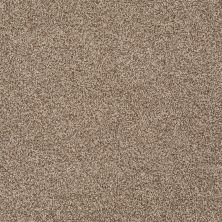 Shaw Floors St Jude Sweet Smiles Mocha Mist 00766_JD326