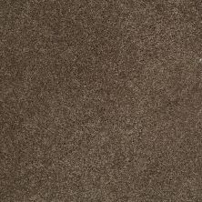 Shaw Floors St Jude In A Twinkling Dark Chocolate 25704_JD327