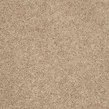 Shaw Floors St Jude Silent Brook (s) Dunes 00127_JD336