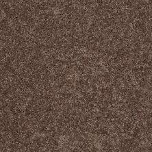 Shaw Floors St Jude Silent Brook (s) Mocha Mix 00723_JD336