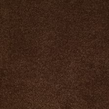 Anderson Tuftex St Jude Inspired Vision Decaf 00776_JD702