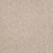 Shaw Floors Cedar Creek Frosty Taupe 01102_LS001