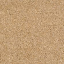 Shaw Floors Cedar Creek Buckwheat 01103_LS001