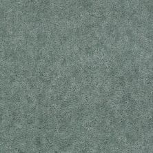 Shaw Floors Cedar Creek Sea Glass 01300_LS001