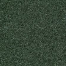 Shaw Floors Cedar Creek Ivy Trellis 01301_LS001