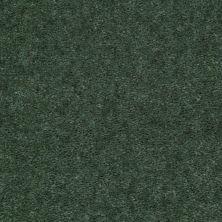Shaw Floors Cedar Creek Ivy Trellis 01301_LS001