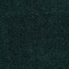 Shaw Floors Cedar Creek Emerald Stone 01302_LS001