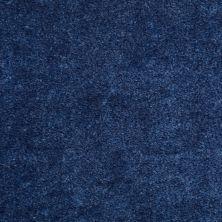Shaw Floors Cedar Creek Regency Blue 01401_LS001