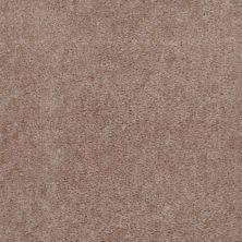 Shaw Floors Cedar Creek Willow 01700_LS001