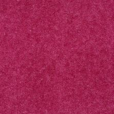 Shaw Floors Cedar Creek Fuchsia 01804_LS001