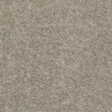 Shaw Floors Deerwood II 15 Taupe Mist 55792_LS056