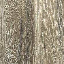 Dolphin Carpet & Tile Milan Aquarius MilanAquarius61/2″X48″