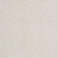 Shaw Floors Nfa/Apg Barracan Classic I Suffolk 00103_NA074