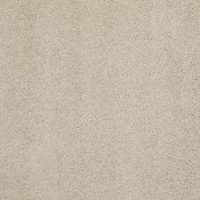 Shaw Floors Nfa/Apg Barracan Classic I Suede 00127_NA074
