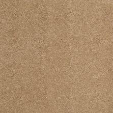 Shaw Floors Nfa/Apg Barracan Classic I Brass Lantern 00222_NA074
