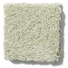Shaw Floors Nfa/Apg Barracan Classic I Celadon 00322_NA074
