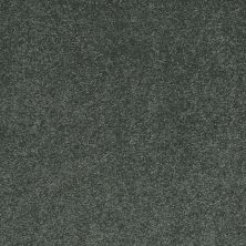 Shaw Floors Nfa/Apg Barracan Classic I Emerald 00324_NA074
