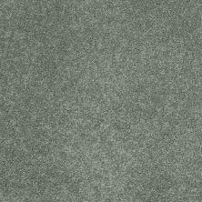 Shaw Floors Nfa/Apg Barracan Classic II Jade 00323_NA075