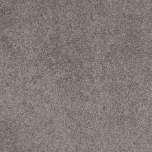 Shaw Floors Nfa/Apg Barracan Classic II Chinchilla 00526_NA075