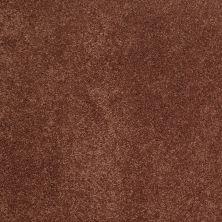 Shaw Floors Nfa/Apg Barracan Classic II Rich Henna 00620_NA075