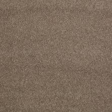 Shaw Floors Nfa/Apg Barracan Classic II Mesquite 00724_NA075