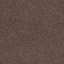Shaw Floors Nfa/Apg Barracan Classic II Spring – Wood 00725_NA075