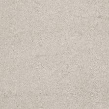 Shaw Floors Nfa/Apg Barracan Classic III Bismuth 00124_NA076