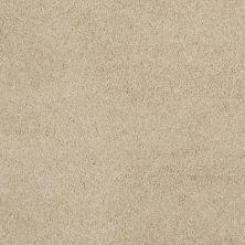 Shaw Floors Nfa/Apg Barracan Classic III Gentle Doe 00128_NA076