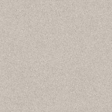 Shaw Floors Nfa/Apg Barracan Classic III Spearmint 00320_NA076