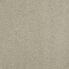 Shaw Floors Nfa/Apg Barracan Classic III Spruce 00321_NA076