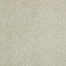 Shaw Floors Nfa/Apg Barracan Classic III Celadon 00322_NA076