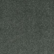 Shaw Floors Nfa/Apg Barracan Classic III Emerald 00324_NA076
