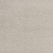 Shaw Floors Nfa/Apg Barracan Classic III Sterling 00511_NA076