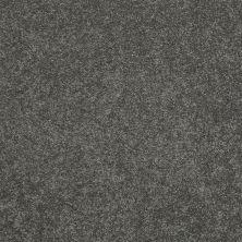 Shaw Floors Nfa/Apg Barracan Classic III Onyx 00528_NA076
