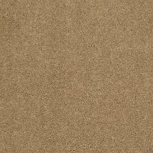 Shaw Floors Nfa/Apg Barracan Classic III Navajo 00703_NA076