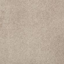 Shaw Floors Nfa/Apg Barracan Classic III White Pine 00720_NA076