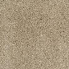 Shaw Floors Nfa/Apg Barracan Classic III Pecan Bark 00721_NA076