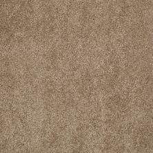 Shaw Floors Nfa/Apg Barracan Classic III Pebble Path 00722_NA076