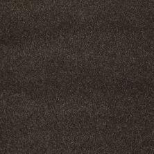 Shaw Floors Nfa/Apg Barracan Classic III Chestnut 00726_NA076