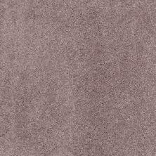 Shaw Floors Nfa/Apg Barracan Classic III Heather 00922_NA076