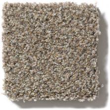 Shaw Floors Tempt Me III Truly Bold III Granite E9456_00700