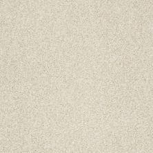 Shaw Floors Nfa/Apg Blended Trio Soft Fleece 00101_NA133