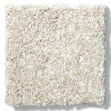 Shaw Floors Nfa/Apg Blended Trio Soft Fleece 00101_NA133