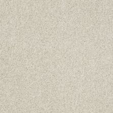 Shaw Floors Nfa/Apg Blended Trio Cheviot 00104_NA133