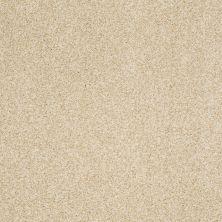 Shaw Floors Nfa/Apg Blended Trio Churro 00105_NA133