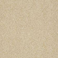 Shaw Floors Nfa/Apg Blended Trio Santa Cruz 00106_NA133