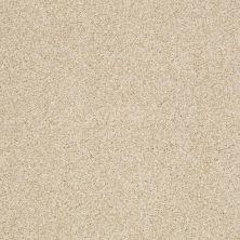 Shaw Floors Nfa/Apg Blended Trio Yearling 00107_NA133