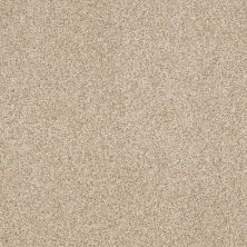 Shaw Floors Nfa/Apg Blended Trio Vicuna 00200_NA133