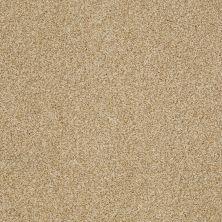 Shaw Floors Nfa/Apg Blended Trio Camel 00201_NA133
