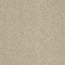 Shaw Floors Nfa/Apg Blended Trio Romney Marsh 00300_NA133